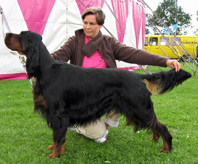 International Dogshow Uden 23.06.2012 007